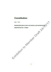 Macs Draft Constitution